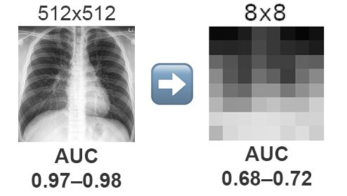 Reading Race: AI Recognizes Patient's Racial Identity In Medical Images Pixelating Performance